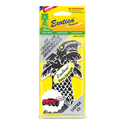 Palm Tree Counter Display 1-Pack. Exotica Ice